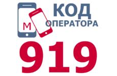 Сотовые операторы с кодом 919